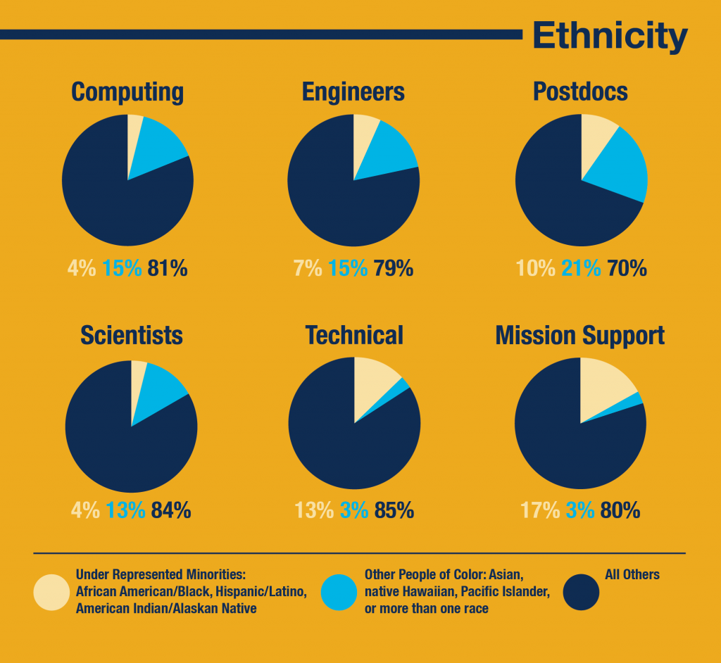 Ethnicity profile. Percentages are rounded up. Data: March 31, 2016