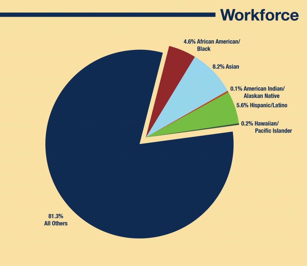Fermilab's workforce by ethnicity. Data: March 31, 2016