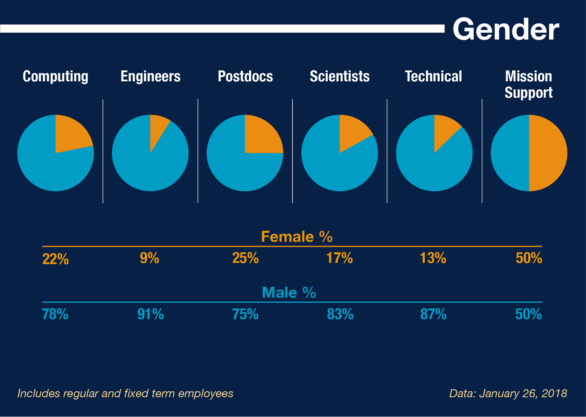 Gender profile. Includes regular and fixed term employees. Data: January 26, 2018